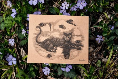 Panter na hladině • pohlednice kraftová