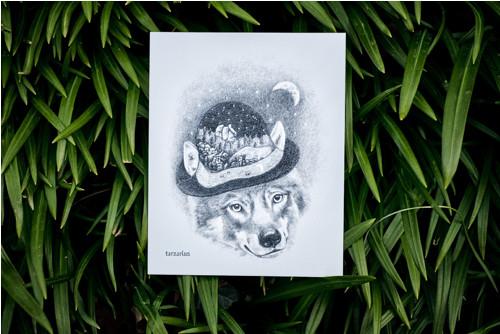 Vlk s kloboukem • pohlednice bílá lesklá