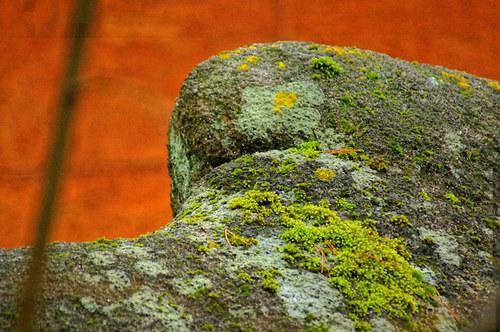 Zeleny kamen