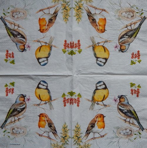 Ptáci na větvi 1418