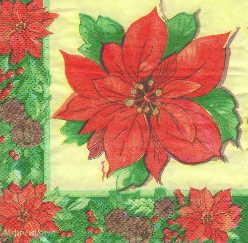 Ubrousek - vánoční růže