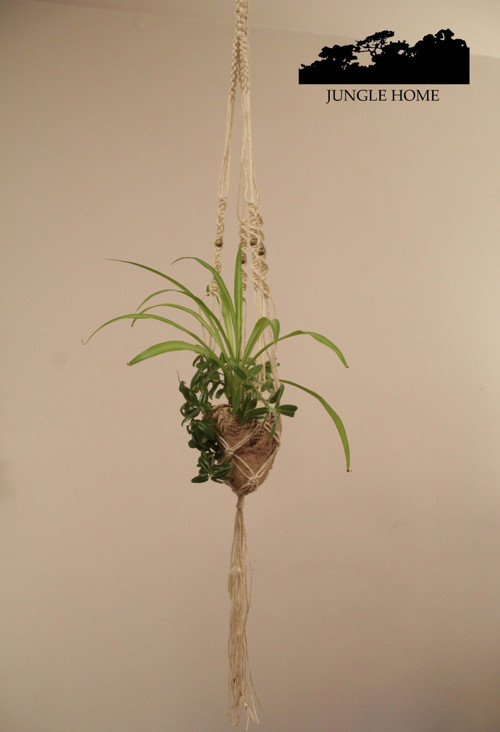 Jungle Nest - hnízdečko na rostliny