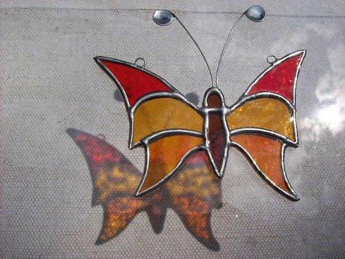 motýl s trojdílnými křídly