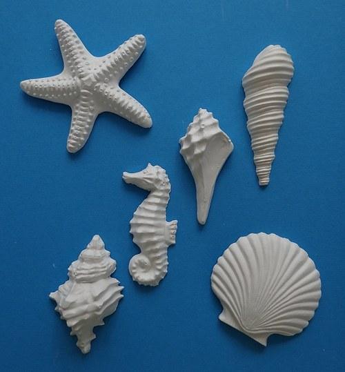 Sádrová dekorace mořské plody, mušle