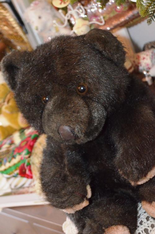 Medvěd jako živý