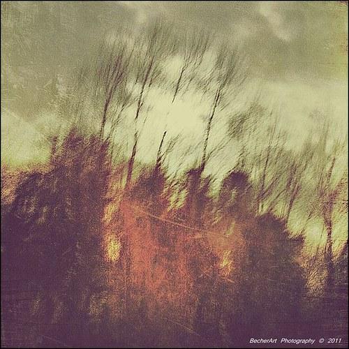 Ethereal Solitude I