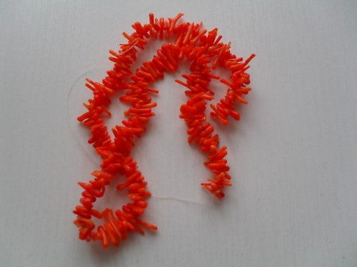 Korál větvičky