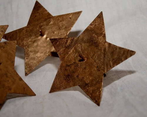 Bodec hvězda zlatá