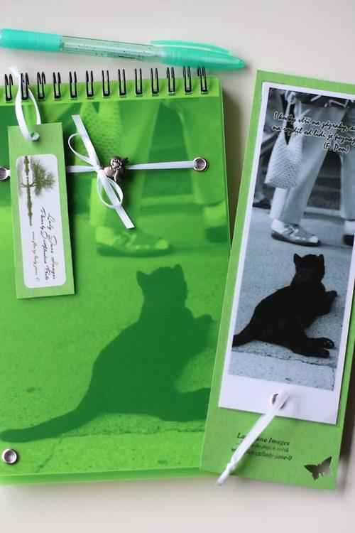 Kočičí zápisky... (sada-80 listů,záložka,propiska)