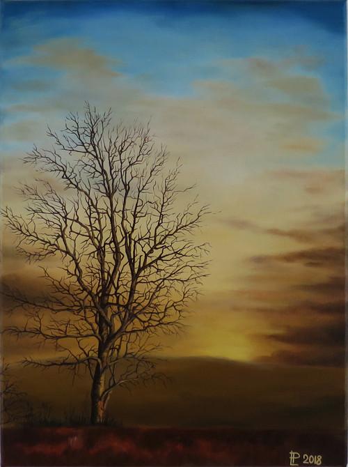 Obraz - Láska k přírodě