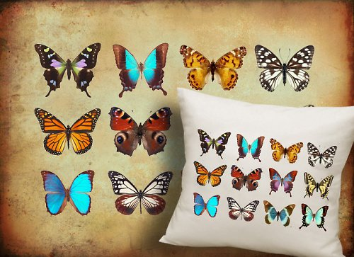 Nažehlovací obrázky - Motýli,cena za všechny