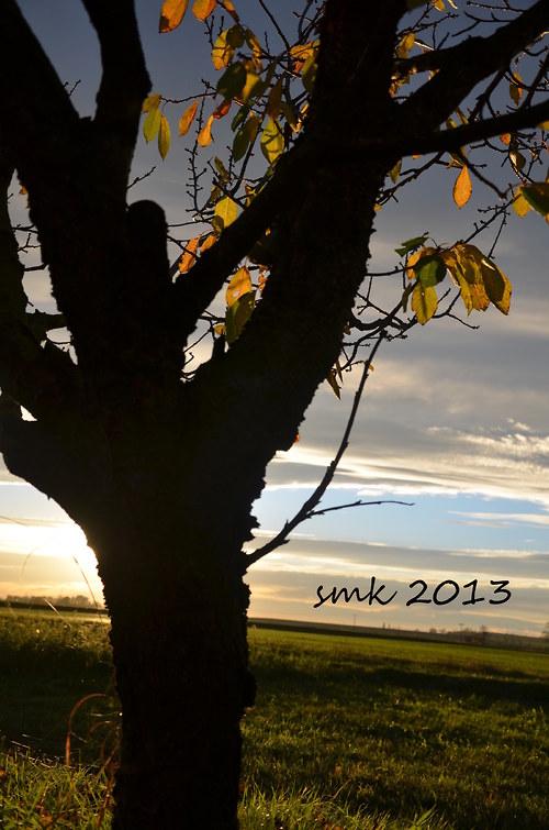 Podzim III - autorská fotografie
