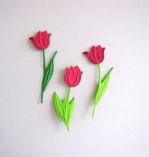 Tři tulipány ostře růžové
