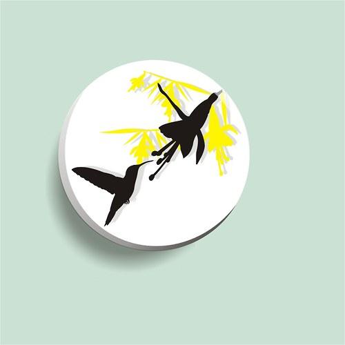 placka hladový kolibřík