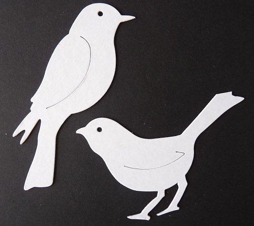 Výseky - ptáčci