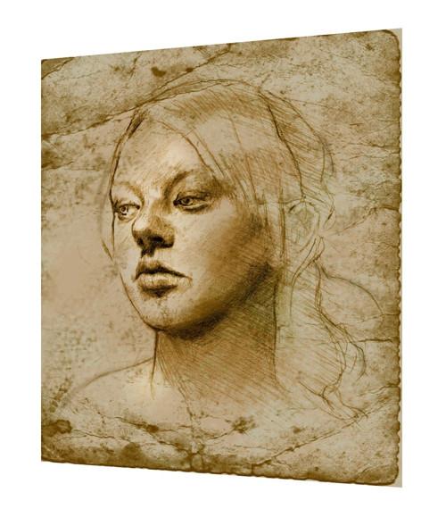 Bavlněný panel Vinci 20
