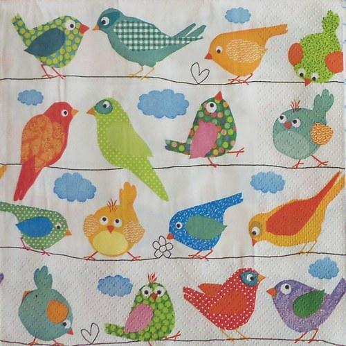 Barevní ptáčci