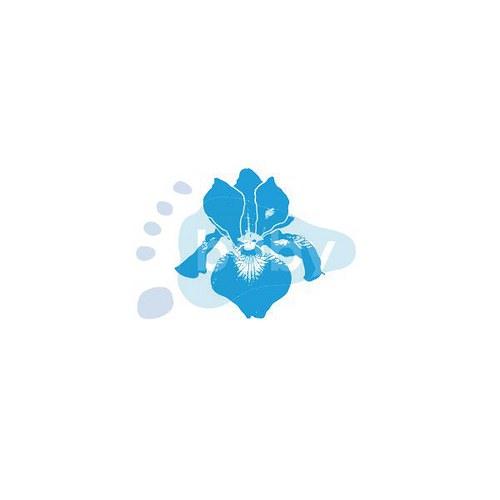 Razítko kosatec květ