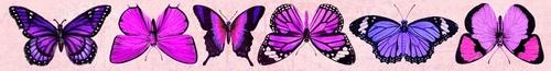 Oboustranný Papírový pásek - motýli Forest