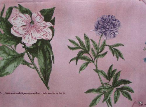 Látka Botanika v růžovém