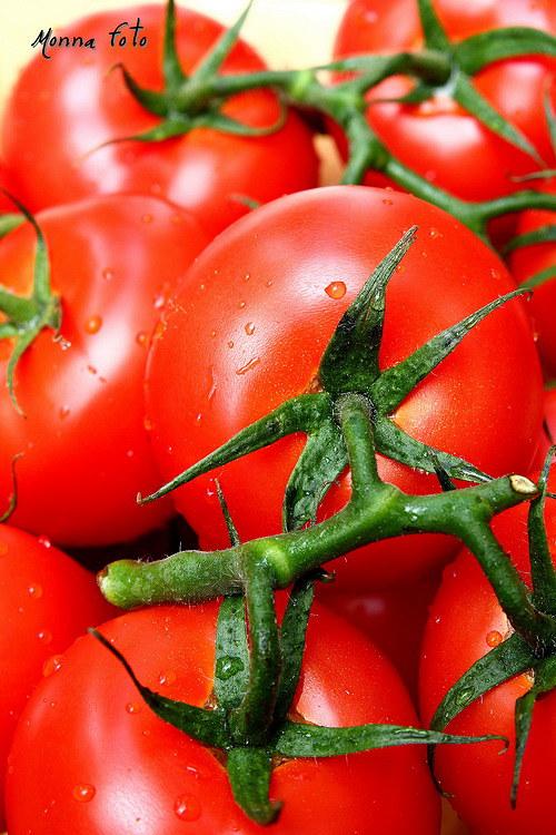 K večeři? Dnes jen rajčata..