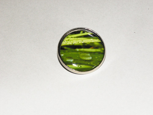 Zelené zrcadlení - Brož