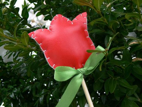 Jarní zápich - červený tulipán