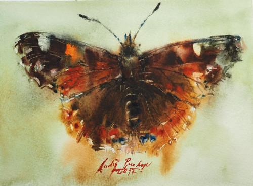 Sbírka motýlů 8,originální akvarel