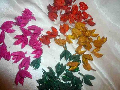 Hibiscus pot. coloured