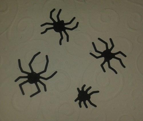 Pavoučci pro štěstí