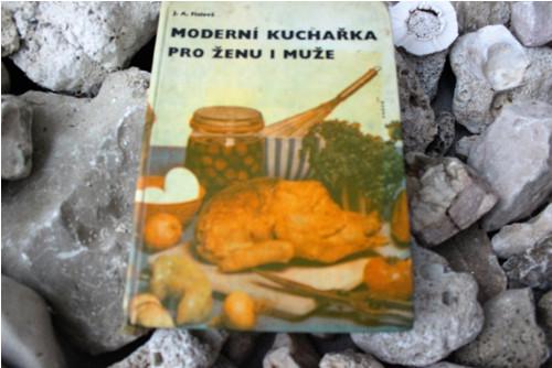 Kniha - Moderní kuchařka pro ženu i muže