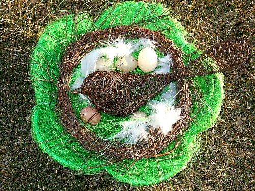 Hnízdo na mezi
