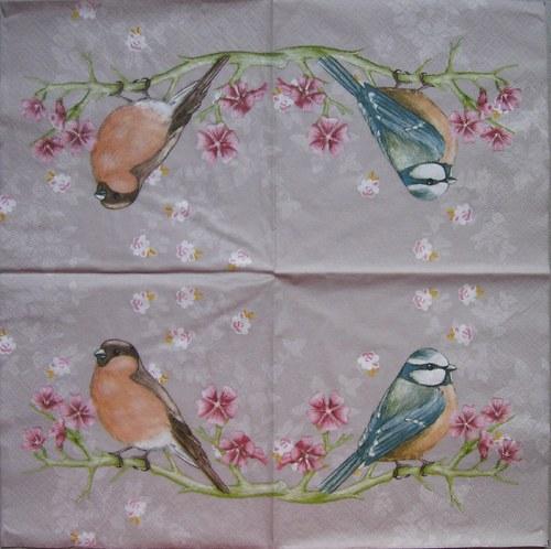 Ptáčci na pískové č. 1775 P