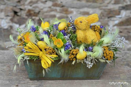 Žlutý zajíc