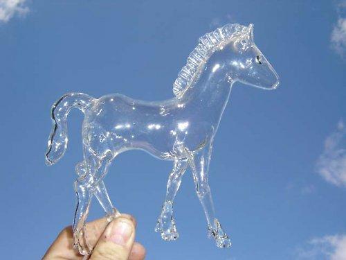 kůň na čtyřech