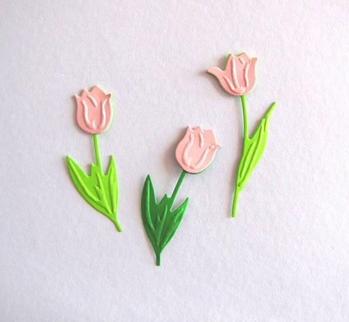 Tři tulipány růžové světlé