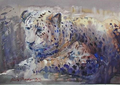 Kočička,originální akvarel