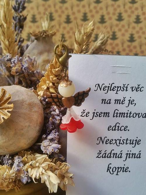 Andělíček pro radost s citátem (93)