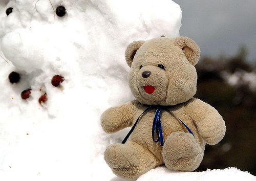 Kamarádi do sněhu