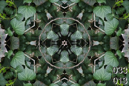 Mandala popínavého listí