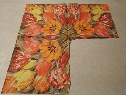 Květiny - tulipány 17.