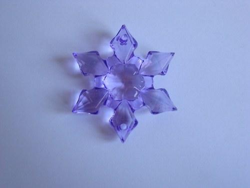 Hvězda fialová