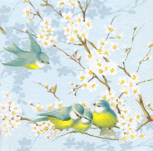 Ubrousek - ptáčci na rozkvetlé větvičce