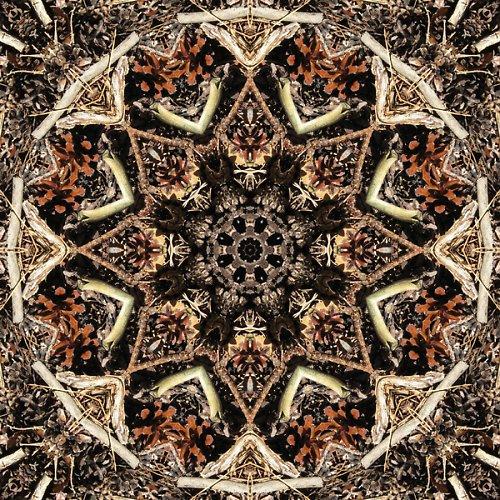 Mandala borových šišek