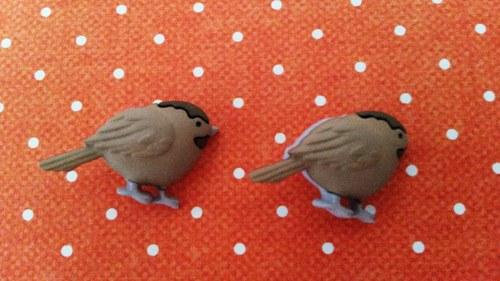 krásní ptáčci