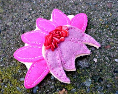 Spinosa rosa