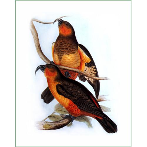 ptáci (31)  (látkový panel)