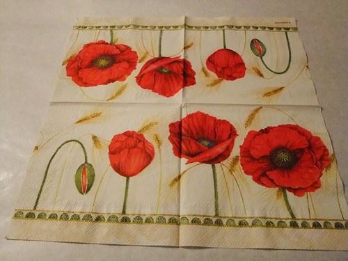 Květiny - tulipány 8.
