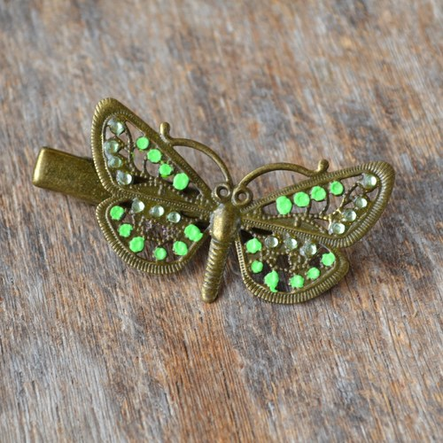 sponka - motýl