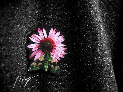 Noční motýl a květ na klopu..